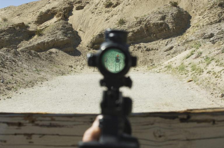 12 Best Rifle Scopes Under $500 (2021)
